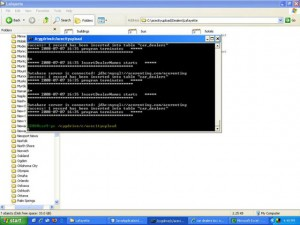 Example of script running a Java class and inserting data into the database