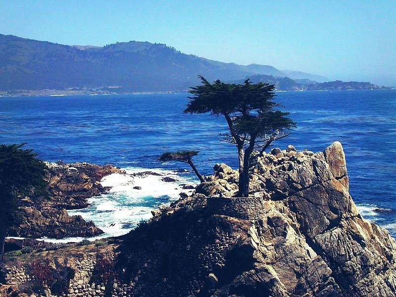 17 Mile Drive, Carmel by the Sea